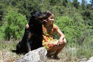 Rottweiler als Familienmitglied