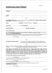 Kaufvertrag Rottweiler Welpen
