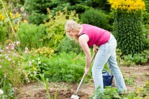 Meinen Rottweiler im eigenen Garten vergraben. Worauf muss ich achten?