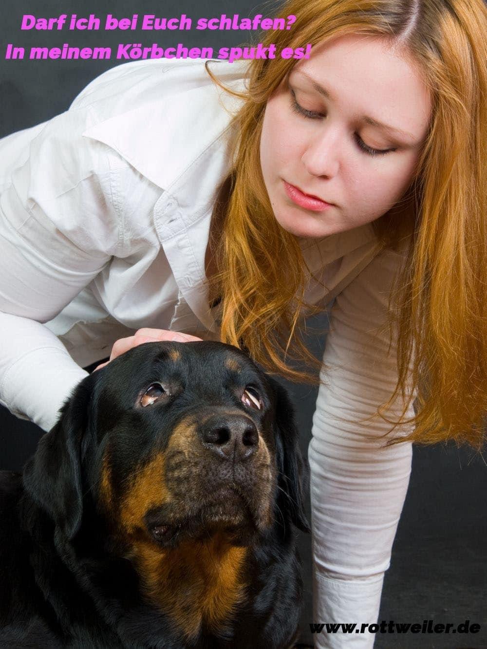 Mädchen und ihr trauriger Rottweiler Hund