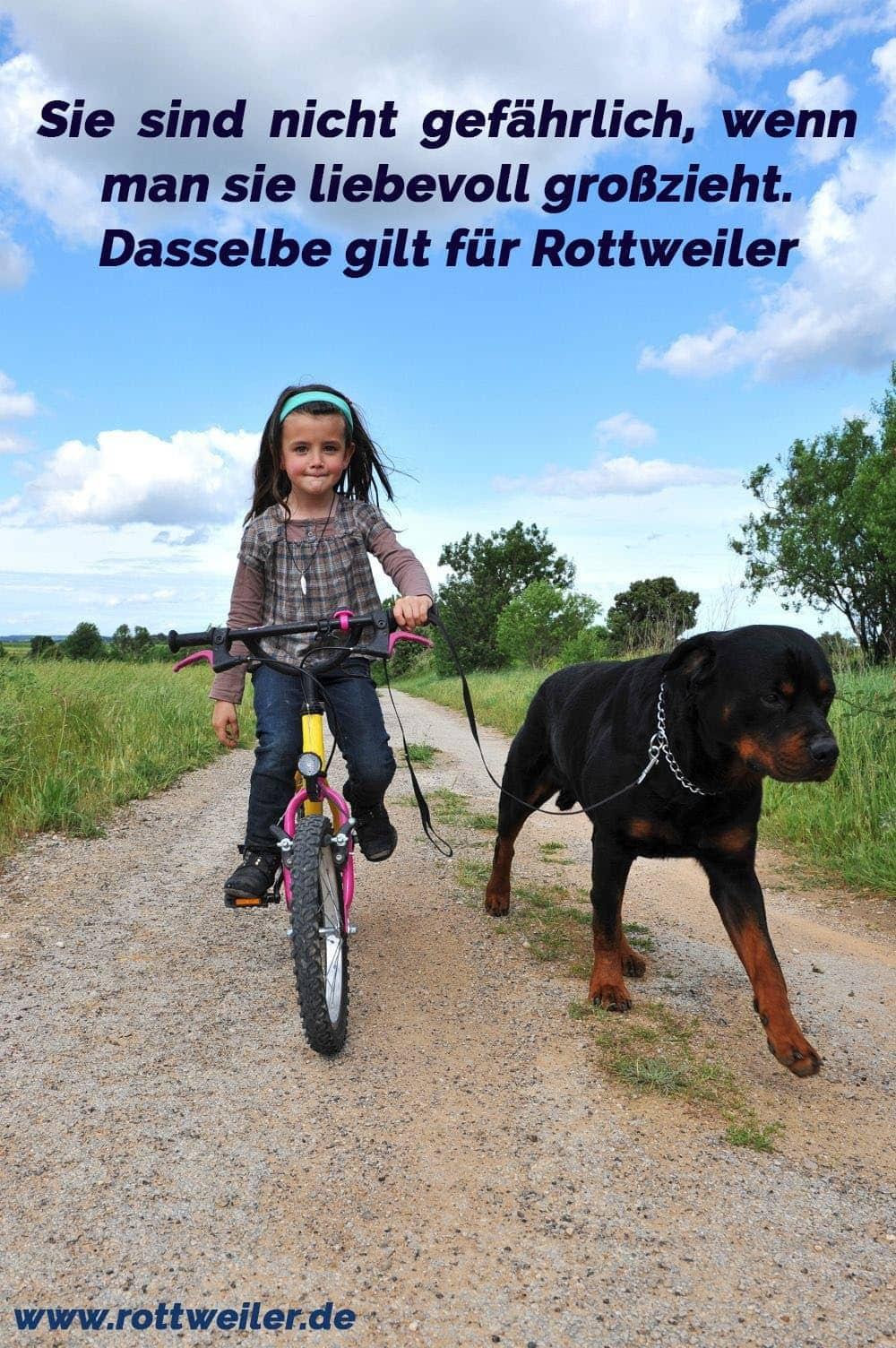 Mädchen auf dem Fahrrad und ihrem besten Freund einem Rottweiler