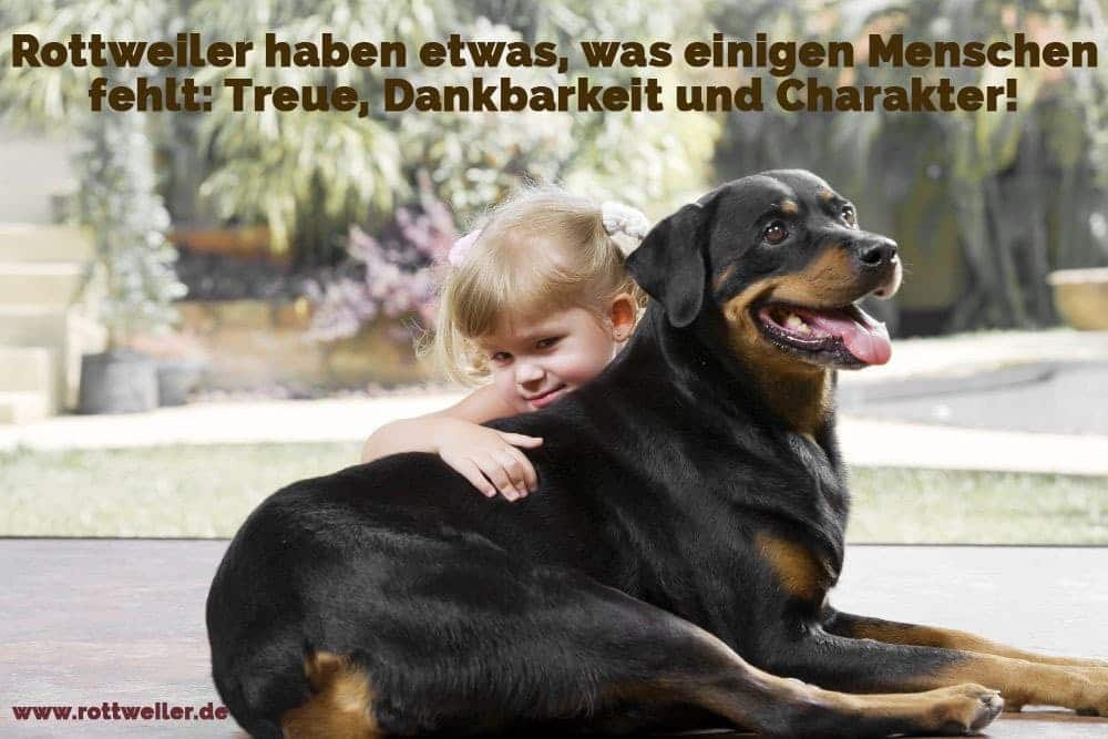 Ein Kind umarmt einen Rottweiler Hund