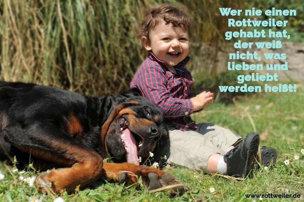Kleines Kind lacht mit Rottweiler