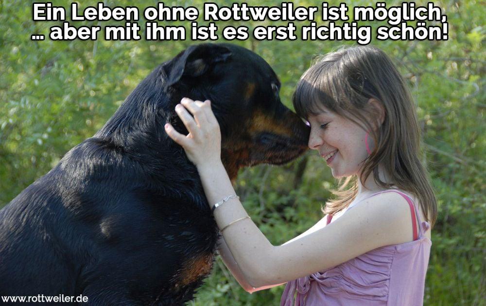 Das Mädchen und ihr Rottweiler