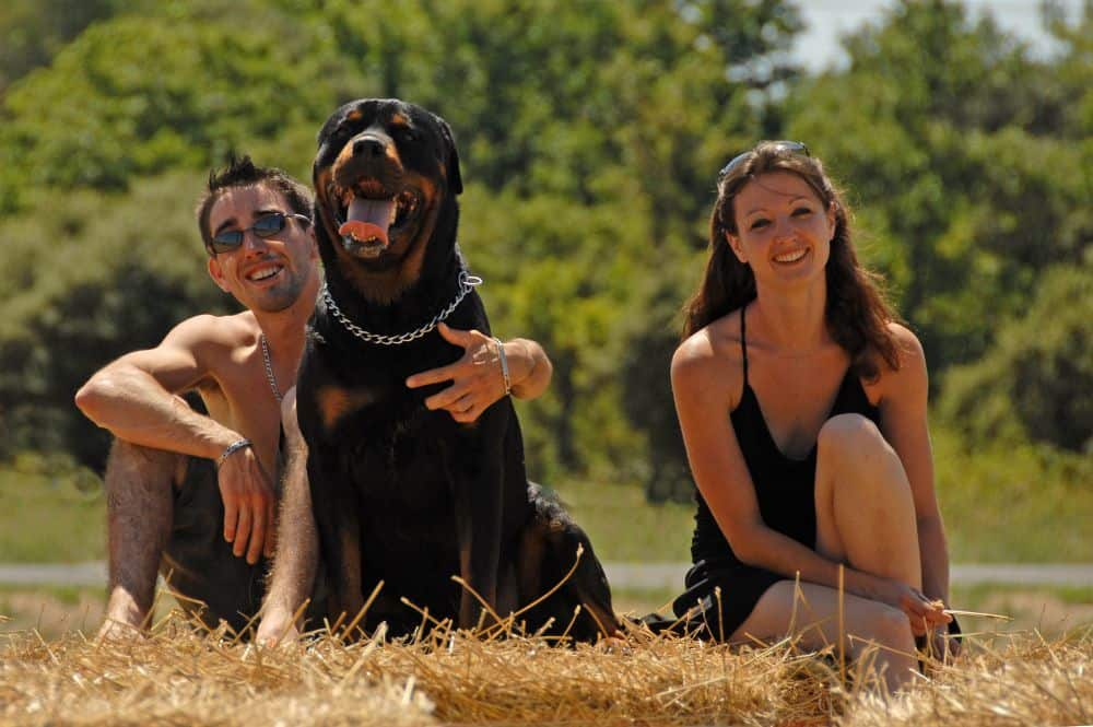 Junges Paar mit Rottweiler im Sommer