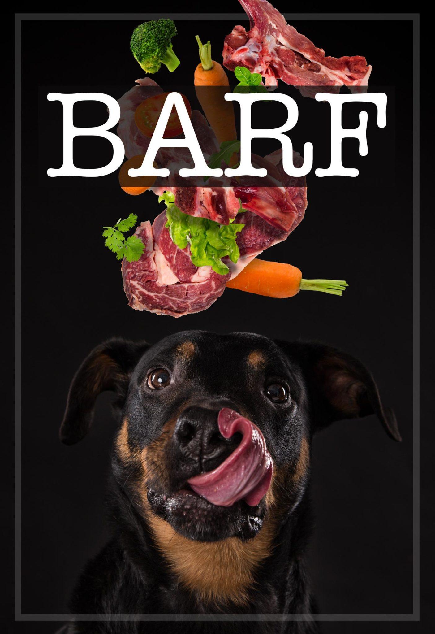 Rohkost, BARF für den Rottweiler